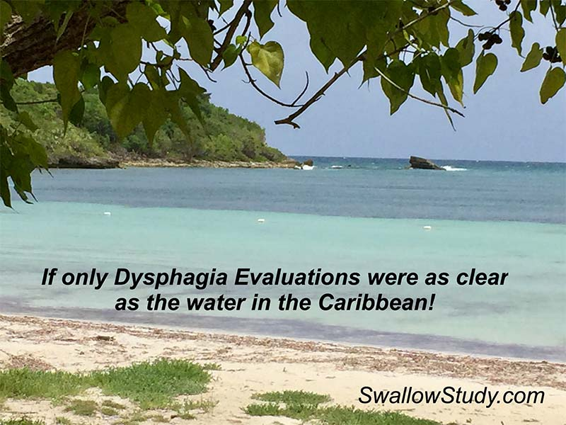 Dysphagia Evaluations (aka, swallowing evaluations) can be murky; not like this crystal clear Caribbean water. Complete this survey and help define the dysphagia evaluation in the literature.