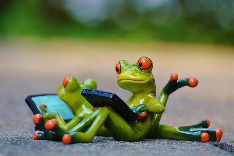 Cute frogs remind therapists that documentation is everything in our changing healthcare climate, especially with ICD-10-CM and ICD-10-PCS