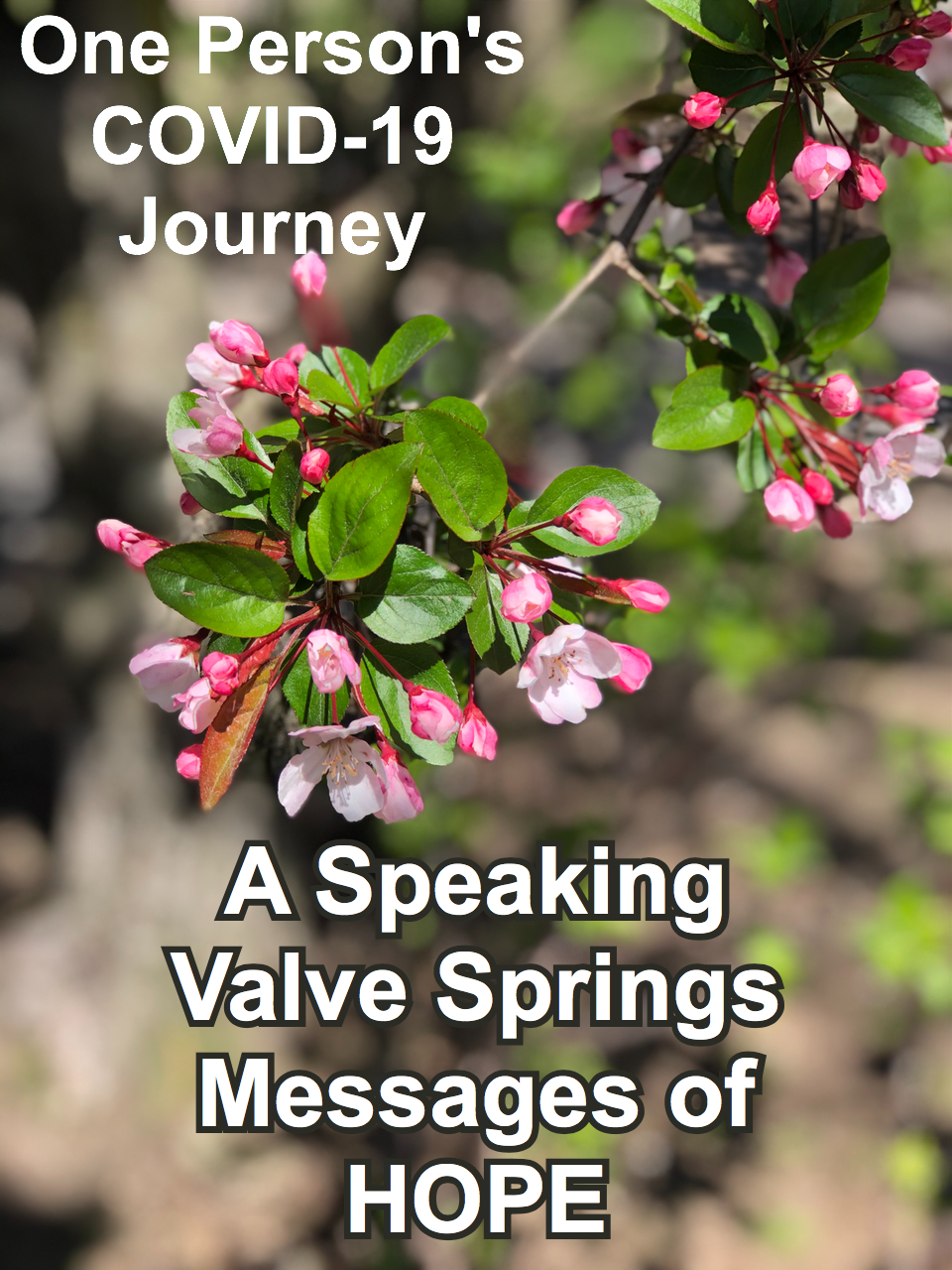 A spring flowering tree is a symbol of bringing hope in these dark pandemic. Rehabilitation methods, such as the use of a speaking valve on a trach, can bring hope.