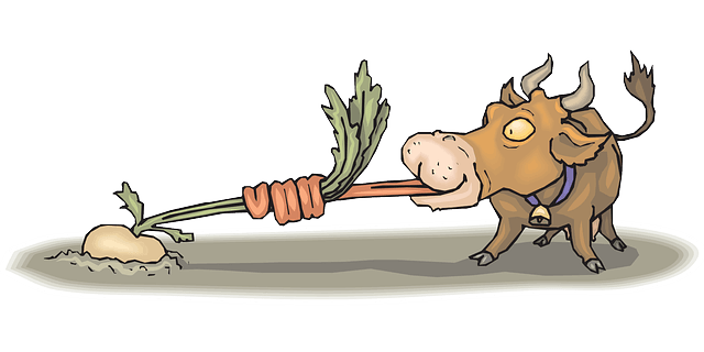 Funny picture of cow pulling out a root vegetable with his tongue. Tongue exercises are important part of dysphagia treatment for many people with difficulty swallowing (dysphagia).